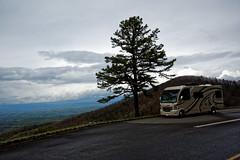 DSC08072 (GlasseyeA) Tags: cradleofforestry thor smokies rv mountains northcarolina blueridge ophelia