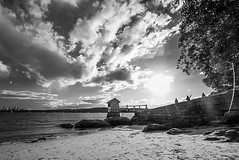 DSC00767 (Damir Govorcin Photography) Tags: water sea sydney harbour landscape blackwhite sky clouds wide angle natural light zeiss 1635mm sony a7rii watsons bay
