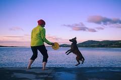 One more throw before the sunsets at Lough Derg! • • • • • #campingwithdogs #hikingwithdogs #dogsonadventures #dogsthathike #adventuredog #thestatelyhound #houndandlife #backcountrypaws #doglove #hikingdogsofinstagram #excellent_dogs #adventureswithdogs # (watson_the_adventure_dog) Tags: one more throw before sunsets lough derg • campingwithdogs hikingwithdogs dogsonadventures dogsthathike adventuredog thestatelyhound houndandlife backcountrypaws doglove hikingdogsofinstagram excellentdogs adventureswithdogs topdogphoto heelergram hikingdog animaladdicts traildog ireland bestwoof visitireland rawireland wanderireland instaireland inspireland irishpassion irelandgram lovesireland stayandwander