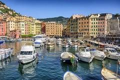 Liguria verticale ... (miriam ulivi OFF /ON) Tags: miriamulivi nikond7200 italia liguria camogli ilporticciolo barche boats case houses colors mare sea molo pier landscape architetture