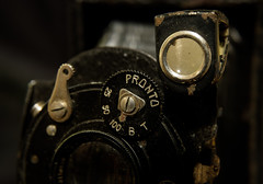 DSCF1793 (bc-schulte) Tags: xt20 fujinon 1650mm polaroid nahlinse 10 laack rathenow kamera retro macro analog objektiv