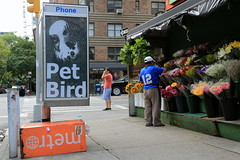 rip pet bird (Luna Park) Tags: ny nyc newyork manhattan streetart adtakeover phonebooth adbust subvertising lunapark petbird tribute rip birthday laserburners petercarroll rapgang newwavegenius rippetbird