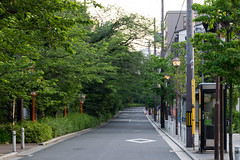 Kiyamachi (Takikura) Tags: kyoto japan kiyamachi