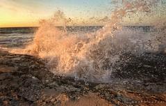 Smash .. (Hazem Hafez) Tags: waves sunset cliff sea splash water wet clash collision sand spray droplets