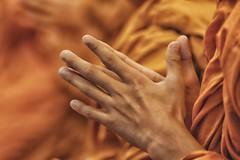 preghiera (mat56.) Tags: mani hands monastero monastery monaci monks preghiera prayer buddista buddhist religione religion watchediluang chiangmai thailandia thailand asia antonio romei mat56 persone people