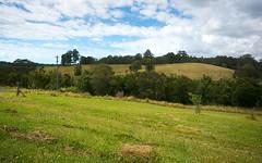Lot 571 Wirrimbi Road, Newee Creek NSW
