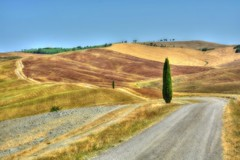 Strada dei Cipressi (giannipiras555) Tags: alberi colline toscana colori
