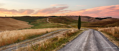 The Path (aryanphotography) Tags: path anthonyrryan anthony landscape sunset anthonyryan italy clouds hdr summer road scenic valdorcia outdoors light sanquiricodorcia cypresstree nature sky