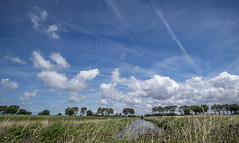 Untitled (Wouter de Bruijn) Tags: fujifilm xt1 fujinonxf14mmf28r landscape clouds sky blue nature trees outdoor grass water canal koudekerke walcheren zeeland nederland netherlands holland dutch