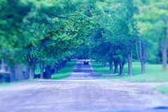 On the Road (Haytham M.) Tags: street car canada ontario countryside drive road with beautiful colors