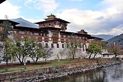 Castle in Bhutan