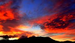 Fiery MOUNTAIN Sunset (Lani Elliott) Tags: nature naturephotography sky skies cloud clouds sunset fiery silhouette mountain mountwellington scene scenic view australia tasmania hobart gorgeous incredible wow beautiful
