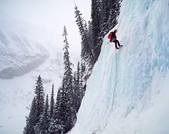 If it was easy, everyone would be doing it (Zeb Andrews) Tags: pentax67 banff lakelouise film colorfilm iceclimbers alberta canada canadianrockies mediumformat 6x7 kodakektar100 climbing winter ice