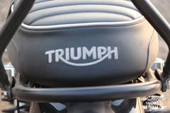 Triumph-Bonneville-T100 (15)