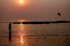 INDIA8373 (Glenn Losack, M.D.) Tags: india juhu beaches sunsetting sunsets