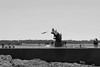 L'envol (SALGREV92) Tags: plongeon swimingpool saintmalo bretagne piscinedebonsecour bw noiretblanc monochrome sonya77ii 1650