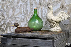 nature morte DxOFP_DSF3368 (mich53 - thank you for your comments and 4M view) Tags: art fremaiville fujifilm xf1655mmf28rlmwr xt1 france valdoise explore poule canard hen duck bottle decoration henne ente flasche dekoration gallina pato botella decoración