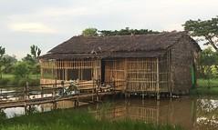 Myanmar, Yangon Region, Southern District, Twantay Township, Ta Loke Htaw Village Tract (Die Welt, wie ich sie vorfand) Tags: building buildings myanmar burma yangonregion yangon rangoon southerndistrict twantaytownship twantay talokehtaw surly steamroller
