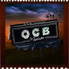 Sedas OCB Rolling Papers (tabacaria-online) Tags: sedas ocb rolling papers