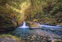 Peace and quiet. (Ryan Kimball) Tags: landscape waterfall forrest pnw umpqua canon 5dsr hike warmth sun beauty peace quiet outdoors explore adventure colors