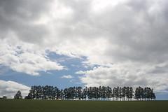 嵐 画像27