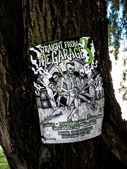 Straight from the Garage 3 (Steve Taylor (Photography)) Tags: straightfromthegarage 3 govalve tyrannosauruswreck nervousjerk cinderellarocketship bloodmoney guitair skeleton beer can speaker poster fumes art eerie spooky scary men newzealand nz southisland canterbury christchurch cbd city tree bark