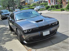 thin blue line (roaddragon305) Tags: dodge challenger srt graphics roadspot thejunction