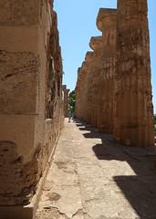 Tempio E (Badly Drawn Dad) Tags: geo:lat=3758658948 geo:lon=1283452042 geotagged ita italy sicily parcoarcheologicodiselinunte selinunte siciliandoric templee