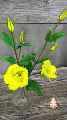 Shugar Lisiantus (Albena Bojidarova) Tags: shugar flowers gumpaste cake decorating topper lisiantus