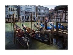 Hello, who's talking? (W Gaspar) Tags: venezia veneto venice italia italy gondola grancanal europe europa water man buildings old travel nikon nikkor v1 wgaspar photoborder urban