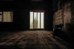 The Apparition (RazRutton) Tags: art ghost apparition home house creepy scary fear curiosity horror fine