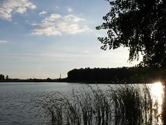 Szałe 1: Reflection. Water reservoir in Szałe by Kalisz, Poland. Called also 'Jezioro (Lake) Pokrzywnickie'. Taken by WR. (kachigarasu) Tags: poland landscape ポーランド ヨーロッパ 風景 日没 sunset szałe シャウェ kalisz カリシュ wielkopolska ヴィエルコポルスカ lake 湖 人工湖 water reservoir 貯水湖 貯水 人造湖 貯水池 jezioro pokrzywnickie 反映 reflection sky 空 evening 夕暮れ 夕方