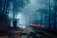 Sintra light (J C Mills Photography) Tags: canon5dsrportugalsintra sintra forest woods fog longexposure lighttrails creepy mysterious landscape building