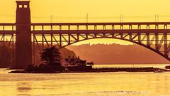 Britannia Bridge (Ady Negrean) Tags: anglesey britannia britanniabridge uk a5road a5 northwales bridge menai menaistrait strait island sunset afternoon tree