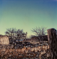 New Mexico Ruins (tobysx70) Tags: polaroid sx70 sonar emulsion manipulation time zero tz instant film new mexico ruin route 66 nm abandoned building gate fence post trees landscape blue sky rt rte toby hancock photography