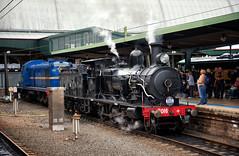On Show (SJB Rail) Tags: c30t 3016 steam train 4001 sydney central railroads trains expo