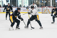 "Pens_Devolpment_Camp_7-1-17-85 • <a style=""font-size:0.8em;"" href=""http://www.flickr.com/photos/134016632@N02/35495037572/"" target=""_blank"">View on Flickr</a>"