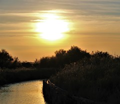 Riverside (Nadryv) Tags: river canal sunset sun sky red water reflection