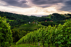 Kitzeck (CHCaptures) Tags: a7ii kitzeck landschaft sel2470z sony sommer steiermark styria clouds cokinfilters green hill ilce7m2 nature outdoor sky summer winegarden
