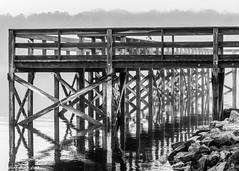 Dock On A Rainy Day (that_damn_duck) Tags: lakemurraysc southcarolina blackandwhite dock rainyday foggy fog waterreflection water bw blackwhite architecture