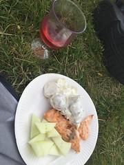 Picknick/Middag 4/7 (Atomeyes) Tags: mat lax filé potatis sallad rosé vin melon
