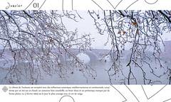 Page intérieure // Janvier