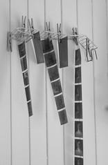 (Therese Østberg) Tags: pictures bilder negative negativ old gammel film fremkalling abandoned forlatt nikon nikond300s norway sigma ¨svarthvitt blackandwhite bw svarthvitt