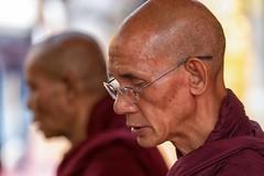 monaci a wat phrathat doi suthep (mat56.) Tags: ritratto ritratti portrait portraits monaci monaco monk monks buddista watphrathatdoisuthep thailandia thailand profilo profile profili asia religione religion antonio romei mat56
