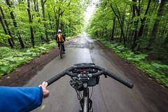 Nopporo Shinrin Park Mountain Biking (Sapporo City, Hokkaido, Japan) (Robert Thomson) Tags: hokkaido sapporo mountainbiking trailriding forestpark nopporopark nopporoforestpark