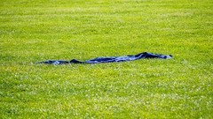 Blue Towel on Green Grass (deepaqua) Tags: grass centralpark sheepmeadow dutchclover nyc