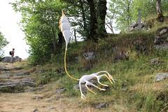 La couleur est annoncée... (Diké) Tags: auvergne sancy été grands sites festival art nature oeuvres environnement paysages sortie brök dikée images archives