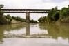 Mouhoun river (CIFOR) Tags: africa burkinafaso mouhounriver aquaticenvironment waterresources water environmentalimpact horizontal environment boromo cifor bridge climatechange ecology ecosystem environmentalism