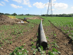 West of Waterlooville - 2017-06-11 (Bollops) Tags: wow westofwaterlooville havant winchester hampshire council mda building infrastructure drains water pipes trenches careys waterlooville estateagent forsale tobuy tolet