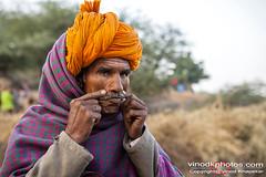 Pushkar Shepherd (Vinod Khapekar) Tags: india pushkar portrait man shepherd pose smile face avaialblelight rajasthan camel canon5dmarkii canon vinodkhapekar